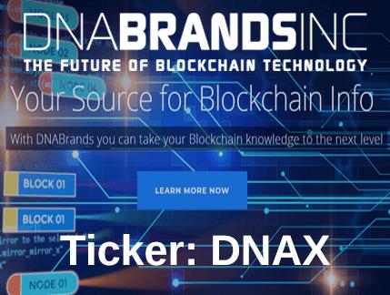 DNAX Stock