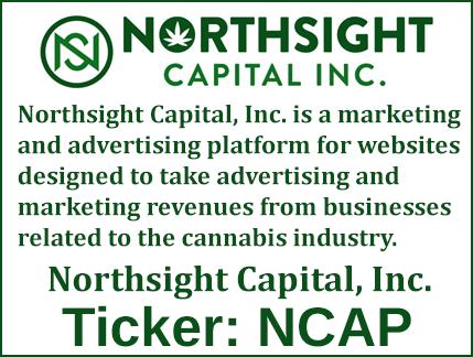NCAP Stock